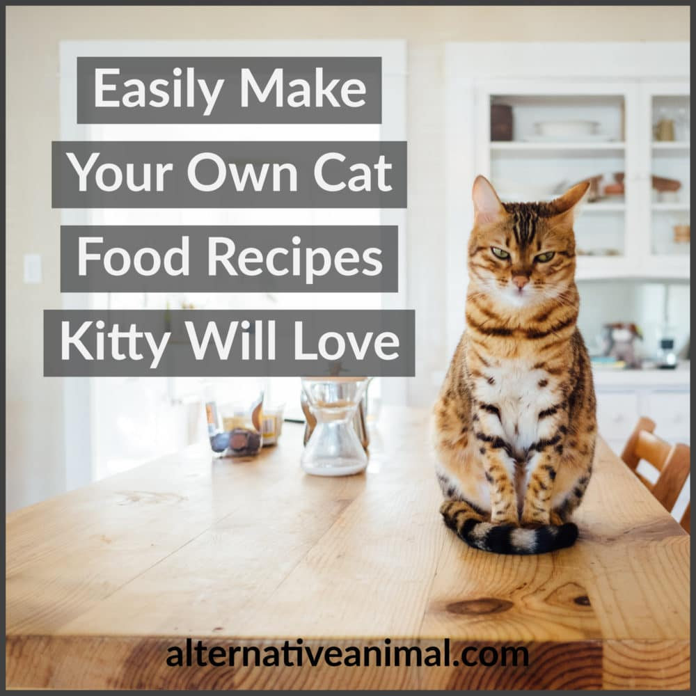 Make your own cat food