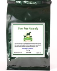 natural ulcer treatment for horses