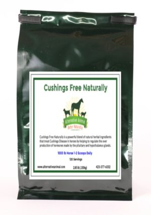 Natural Cushing's Treatment for Horses